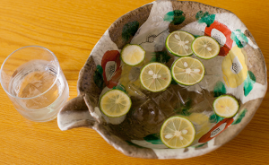 FireShot Capture 937 - 武庫之荘でいただく美味しい兵庫の地酒と絶品料理 - http___www.tamikou-tomoki.com_drink.html